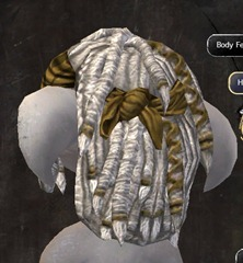 gw2-new-hairstyles-asura-male-1-3