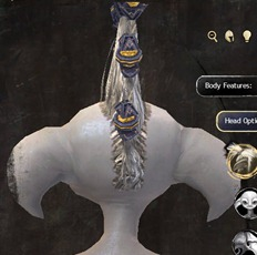 gw2-new-hairstyles-asura-male-2-3