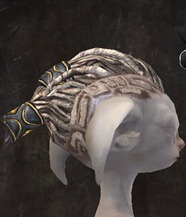gw2-new-hairstyles-asura-male-3-2