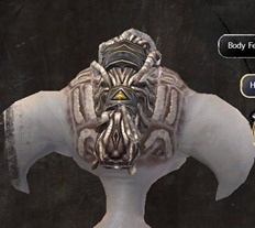 gw2-new-hairstyles-asura-male-3-3