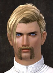 gw2-new-hairstyles-human-male-1