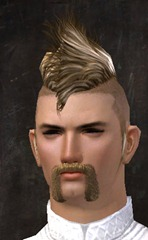 gw2-new-hairstyles-human-male-2