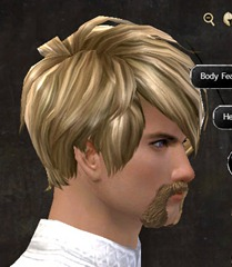 gw2-new-hairstyles-human-male-3-2