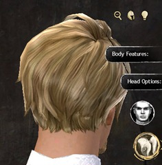 gw2-new-hairstyles-human-male-3-3