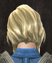 gw2-new-hairstyles-norn-female-1-3