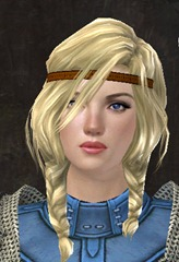 gw2-new-hairstyles-norn-female-1