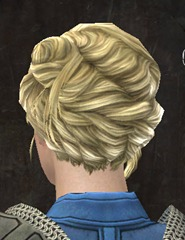 gw2-new-hairstyles-norn-female-2-3