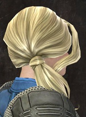 gw2-new-hairstyles-norn-female-3-1