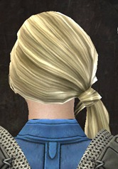 gw2-new-hairstyles-norn-female-3-2