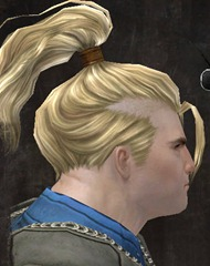 gw2-new-hairstyles-norn-male-1-2
