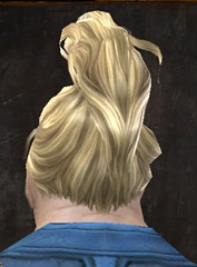 gw2-new-hairstyles-norn-male-1-3