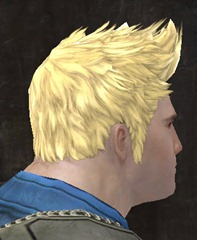 gw2-new-hairstyles-norn-male-2-2