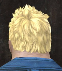 gw2-new-hairstyles-norn-male-2-3