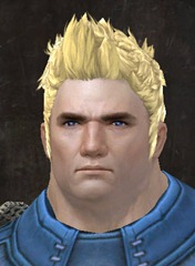 gw2-new-hairstyles-norn-male-2