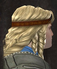 gw2-new-hairstyles-norn-male-3-2