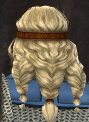 gw2-new-hairstyles-norn-male-3-3
