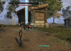 eso-cyrodiil-aldmeri-skyshards-helping-establish-a-new-town-3