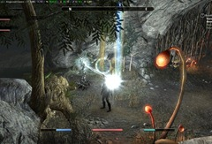 eso-cyrodiil-ebonheart-skyshards-the-monarch's-buried-secret-3