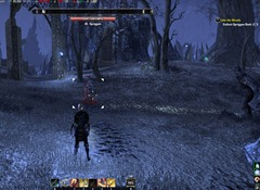 eso-into-the-woods-coldharbour-quest-guide-3
