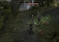 eso-nature's-best-friend-malabal-tor-quest-guide