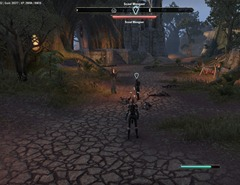 eso-oath-of-excision-reaper's-march-quest-guide