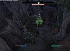 eso-the-will-of-the-woods-bangkorai-quest-guide-4