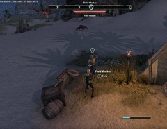 eso-trouble-at-the-rain-catchers-alik'r-desert-quest-guide