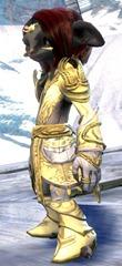 gw2-incarnate-light-armor-skin-asura-2