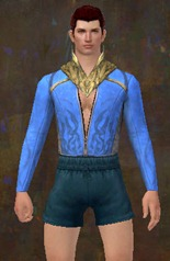 gw2-incarnate-light-armor-skin--chest