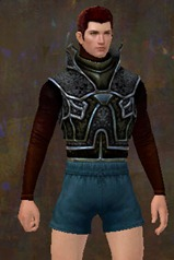 gw2-rampart-heavy-armor-skin-chest-male