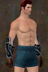 gw2-rampart-heavy-armor-skin-gloves-male