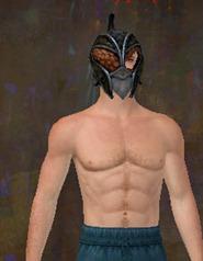 gw2-rampart-heavy-armor-skin-helm-male