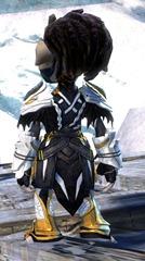 gw2-strider-medium-armor-skin-asura