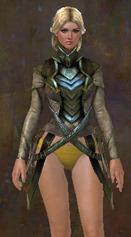 gw2-strider-medium-armor-skin-chest