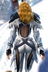 gw2-strider-medium-armor-skin-human-female-6