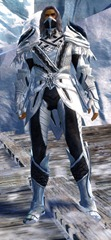 gw2-strider-medium-armor-skin-human-male (2)
