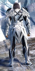 gw2-strider-medium-armor-skin-human-male-3