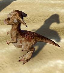 swtor-taunling-pet-2