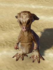 swtor-taunling-pet