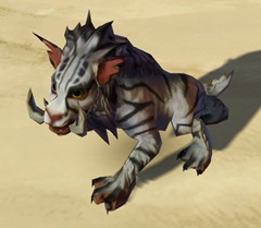 swtor-tundra-nekarr-cat-pet-2