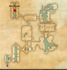 eso-skull-reaper-veteran-wayrest-sewers-dungeon-guide-4