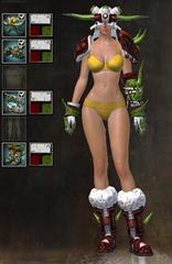 gw2-lawless-armor-set-4pc-4