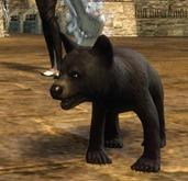 gw2-mini-bear-cub-2