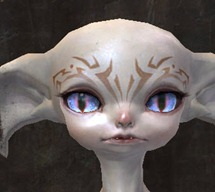 gw2-new-faces-festival-of-four-winds-asura-male-2