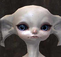 gw2-new-faces-festival-of-four-winds-asura-male-3