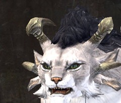 gw2-new-faces-festival-of-four-winds-charr-female-3