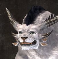 gw2-new-faces-festival-of-four-winds-charr-male-1