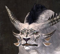 gw2-new-faces-festival-of-four-winds-charr-male-3