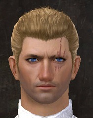 gw2-new-faces-festival-of-four-winds-human-male-1