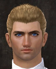 gw2-new-faces-festival-of-four-winds-human-male-2